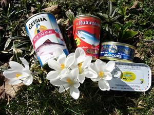 Лосось, тунец и сардины - превосходные источники масла Омега-3. Фото: Луиз Валентайн, Великая Эпоха
