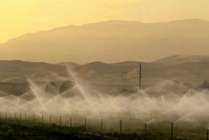 Распыление удобрений. Фото: David McNew/Getty Images