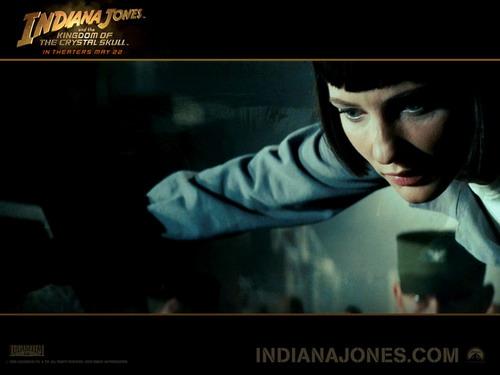 Кадр из фильма. Фото: indianajones.com
