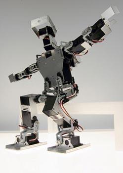 Робот Sleep Waking. Фото с сайта Фернандо Орелланы