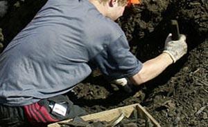 Ученые исследуют шерстистого носорога. Фото: РИА Новости