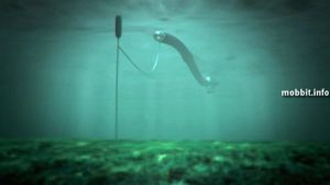 Создана «Анаконда», генерирующая электричество. Фото с сайта mobbit.info
