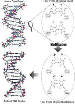 Ученые создали искусственную молекулу ДНК. Фото с сайта cybersecurity.ru