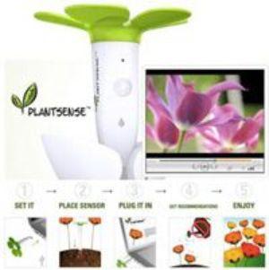 """Новое устройство позволит """"услышать"""" голос растений. Фото: plantsense.com"""