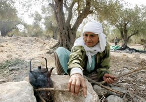 Женщина на Ближнем Востоке готовит кофе в оливковой роще. Фото: Saif Dahlah /AFP /Getty Images