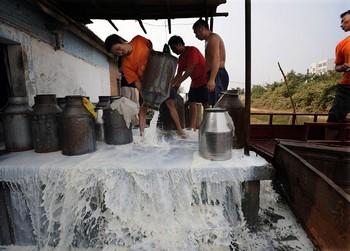 Крупный скандал с отправленным меламином молоком китайского производства сильно пошатнул молочную промышленность этой страны. Фото: Getty Images