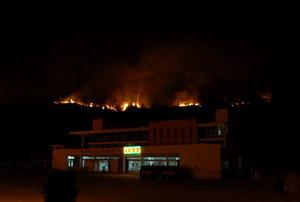 Лесной пожар в провинции Фуцзянь