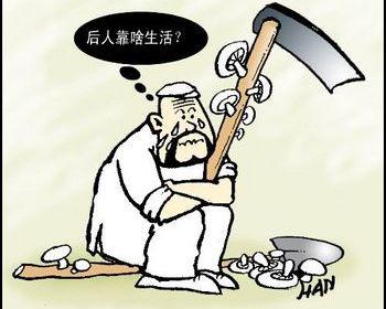 Количество китайских крестьян, потерявших землю, превысит сто миллионов через 10 лет