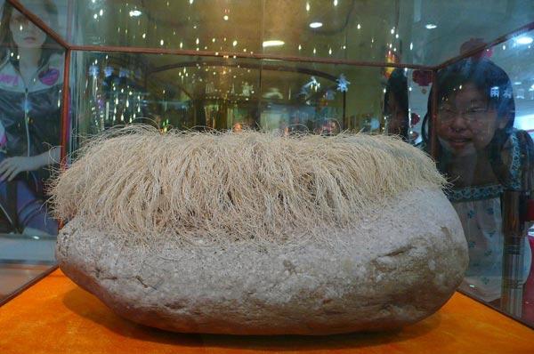 Камень с «седыми волосами». Фото с epochtimes.com
