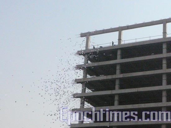Апеллянты с 10-этажного здания сбросили вниз более 8-ми тысяч листовок. Фото: The Epoch Times (Великая Эпоха)