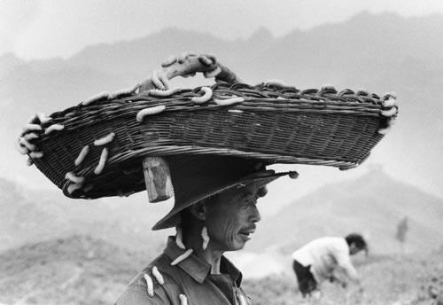 Крестьянин разводящий шелкопрядов. Провинция Хэнань. 1987 год. Фото: Zhao Zhenhai