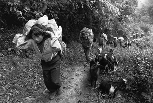 Носильщики. Провинция Юньнань. 1998 год. Фото: Zhou Qinhui