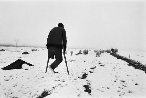 Одноногий пастух на костылях пасёт стадо овец. Провинция Ганьсу. 1990 год. Фото: li Yuanji