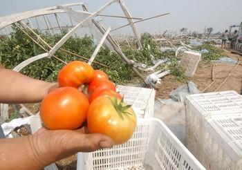 Разрушенные дождём и ветром теплицы. Провинция Хэбэй. Фото с epochtimes.com