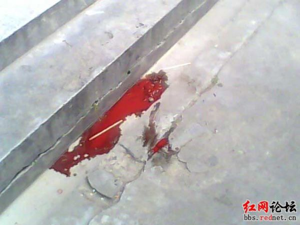 Место падения детей. Фото с epochtimes.com