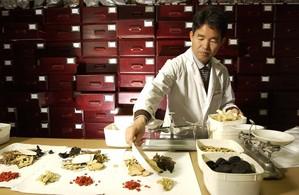 Искусство приготовления лечебных трав - очень важный момент в традиционной китайской медицине и уже тысячелетиями высоко развито. Фото: Маргунд Залловски /Photo courtesy RMIT