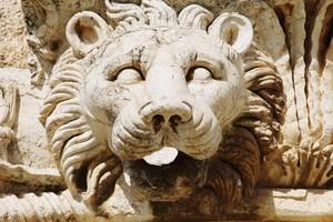 Изображение льва. Фото Бернда Крегеля