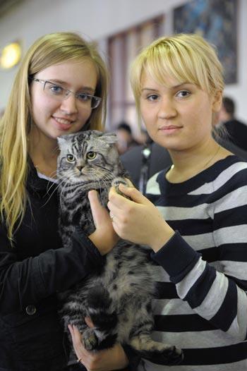 В павильоне 69 ВВЦ прошла выставка кошек, которые многие века служат нам верой и правдой. Фото: Николай Зуев