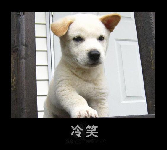 Усмешка. Фото с secretchina.com
