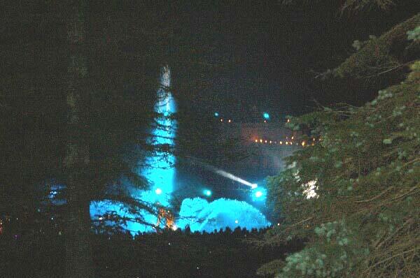 «Праздник фонтанов» в Петергофе. Фото:Ирина ОШИРОВА/Великая Эпоха