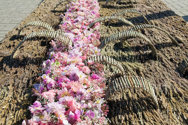 Фестиваль цветущего искусcтва в Вентспилсе. Фото Андрея Аболтиньша
