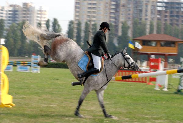 Чемпионат Украины по конкуру 2009 в Киеве. Фото: Владимир Бородин/Великая Эпоха