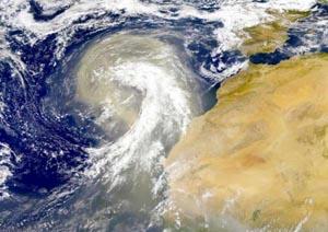 Пыльная буря в пустыне Сахара, движущаяся к Атлантическому океану - снимок, сделанный со спутника. Фото: NASA/Goddard Space Flight Center
