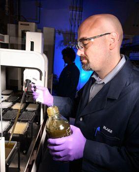 Биотопливо заменит собой 33% всего потребляемого в мире бензина. Фото с 3dnews.ru