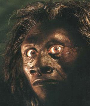Реконструкция лица «хоббита» (из журнала National Geographic)