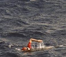 Дженнифер Фиге стала первой в мире женщиной, сумевшей переплыть Атлантический океан. Фото с annews.ru