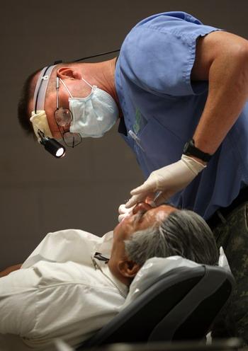 Японские биоинженеры научились выращивать зубы. Фото: Getty Images