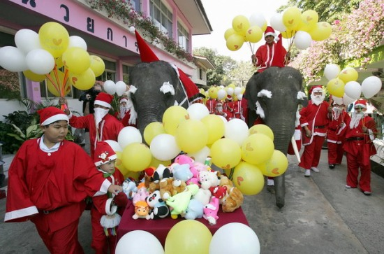 Слон, одетый в костюм Санта Клауса, помогает раздавать игрушки детям во время Рождественского фестивального празднования в школе в области Аюттхаи северный Бангкок 23 декабря 2008. Фото: PORNCHAI KITTIWONGSAKUL/AFP/Getty Images