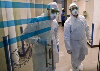 Мутация вируса гриппа А/H1N1: он стал еще агрессивней. Фото:AFP/Getty Images
