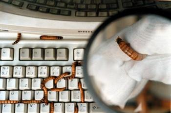 Хакеры могут заполучить технологию, способную выключить системы контроля электростанций, компаний по водообеспечению, воздушному сообщению, правительственных и финансовых систем. Фото:Ami Vitale/Getty Images