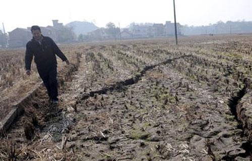 На земле в посёлке Гокуан провинции Хунань начали появляться глубокие трещины. Фото с epochtimes.com
