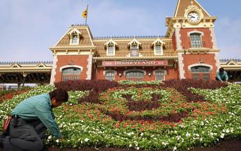 В южной части Шанхая планируют построить Диснейленд.Фото: Matt Stroshane/Disney via Getty Images