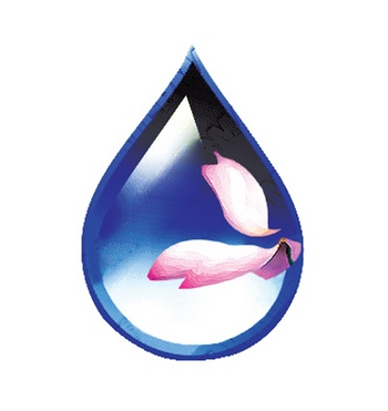 В Китае продолжает ухудшаться состояние качества воды