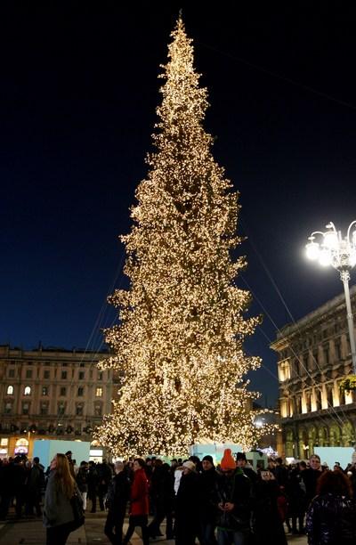 Самые высокие и красивые елки в мире, в Италии, Милан.  Фото: Vittorio Zunino Celotto/Getty Images
