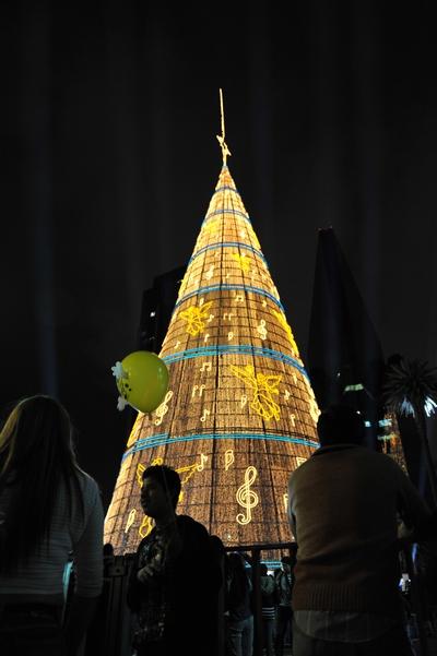 Самая высокая елка в мире в Мексике. Аракаху. Фото:  ALFREDO ESTRELLA/AFP/Getty Images