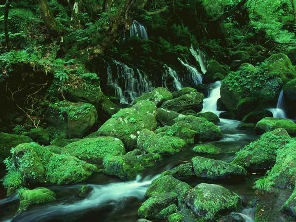 Животворная красота природы. Фото с aboluowang.com