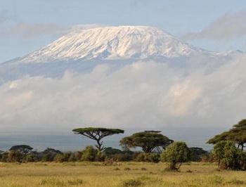 Вулкан Килиманджаро - высочайшая точка Африканского континента. Фото: AHMAD AL-RUBAYE/AFP/Getty Images
