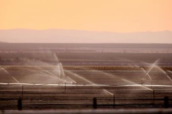 Орошение полей на Центральных равнинах Калифорнии. В этой местности фермеры и рабочие уже третий год страдают от все усиливающей засухи, которая вызвала чрезвычайный дефицит воды и стала причиной безработицы. Фото: David McNew /Getty Images