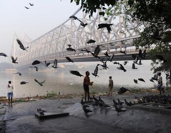 От  реки Ганг зависит благополучие более 400 млн человек, и если ее загрязнению не положить конец, то тем, кто живет на ее берегах, придется искать для новые места обитания. Фото:  DESHAKALYAN CHOWDHURY/AFP/Getty Images