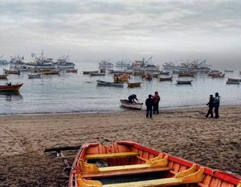 Хилари Бенн сказала, что окислению океана не уделяют такого же внимания, как другим экологическим проблемам, однако это не менее важно.. Фото: ARIEL MARINKOVIC/AFP/Getty Images