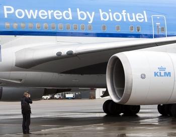Голландская авиокампания KLM начала использовать для полётов биотопливо. Фото: Lex Lieshout/AFP/Getty Images