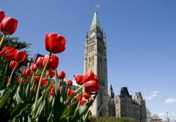Парламентарии Канады создали организацию «Парламентские друзья Фалуньгун». Фото: Великая Эпоха (The Epoch Times)
