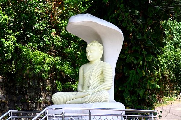 Шри-Ланка. Статуя Будды в Канди. Фото: Сима Петрова/Великая Эпоха (The Epoch Times)
