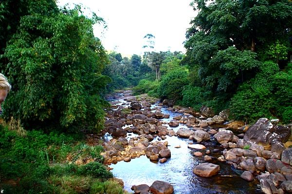 Шри-Ланка. Речка в горах. Фото: Сима Петрова/Великая Эпоха (The Epoch Times)