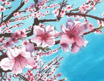 Прекрасно весеннее цветение! Фото: Лиза Воронина/Великая Эпоха (The Epoch Times)