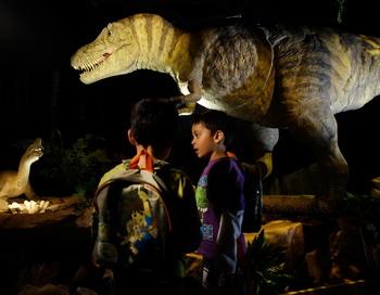 Динозавры, вероятно, были теплокровными животными. Фото: Getty Images